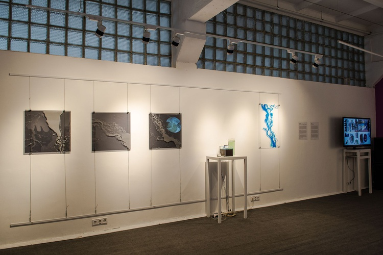 "- Exhibition ""Emergent Tributaries"", General View"