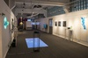 "Exhibition ""Emergent Tributaries"", General View"
